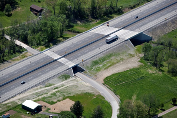 Roadway Bridge Reconstruction